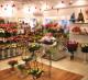 Магазин цветов и подарков без конкурентов