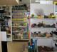 Магазин зоотоваров в Кировском районе