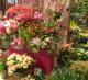 Магазин цветов и подарков м. Марьино