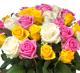 Цветочный магазин с раскрученным сайтом и аккаунтами в соц. сетях
