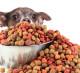 Интернет- магазин кормов для животных. ТОП Яндекс