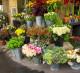 Интернет-магазин по продаже цветов