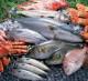 Прибыльный магазин свежей рыбы