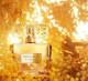 Интернет-магазин парфюмерии прибыль 200.000
