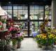 Фирменный цветочный салон