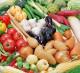Ведущая компания по переработке овощей