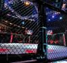 MMAnytt-UFC-Nottingham-UFC-on-Fuel-5-cage-octagon-oktagon-bur-miljö-1.jpg